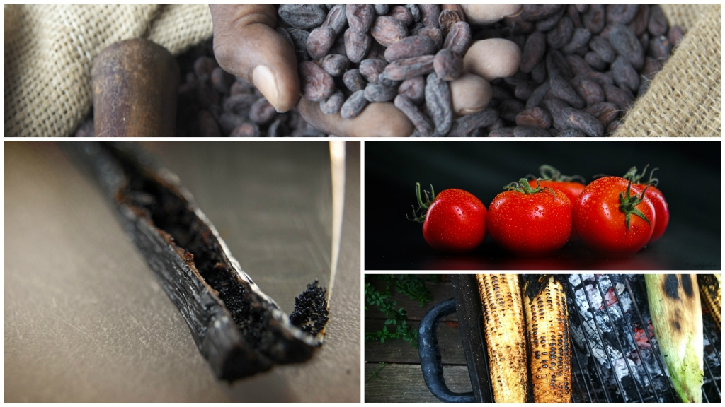 Mexican-Food-Facts-Cocoa-Vanilla-Tomatoes-Corn.jpg