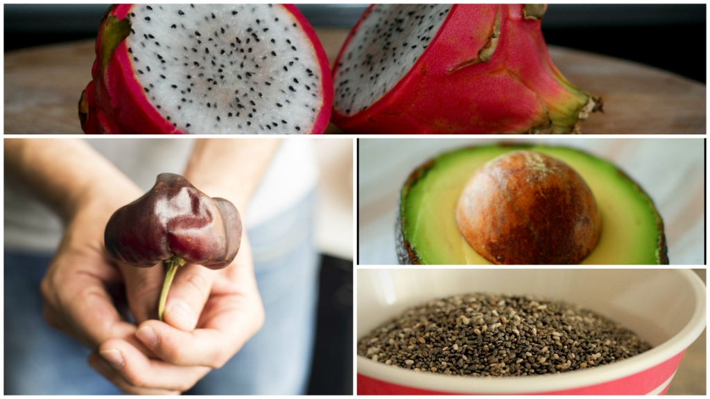 Mexican-Food-Facts-Dragon-Fruit-Chilhuacle-Chilli-Avocado-Chia-Seeds.jpg
